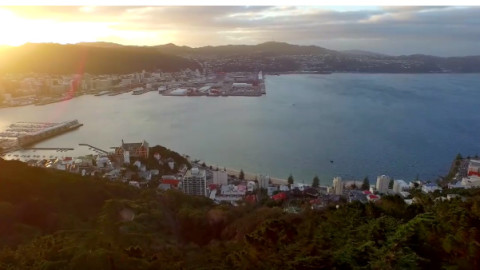 Mountain biking in Wellington