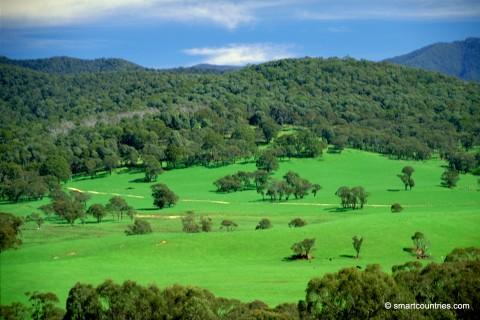 Southern NSW Farm