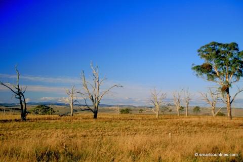 Inland Rural NSW