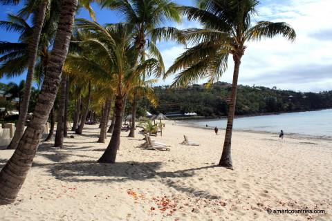 Catseye Beach & Palm Trees