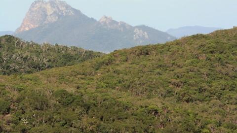 Pentecost Island Peak