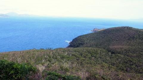 Hamilton Island East Coast