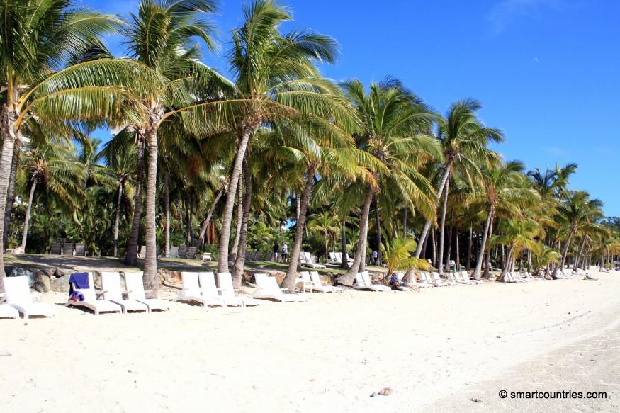 Hamilton Island & Palms