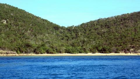 Hamilton Island Coast