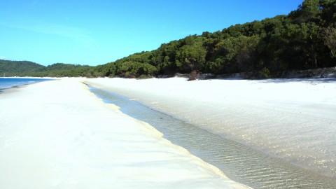 Trough on Whitsunday Island
