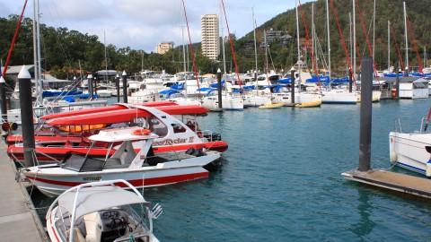 Tour Boats Hamilton Island