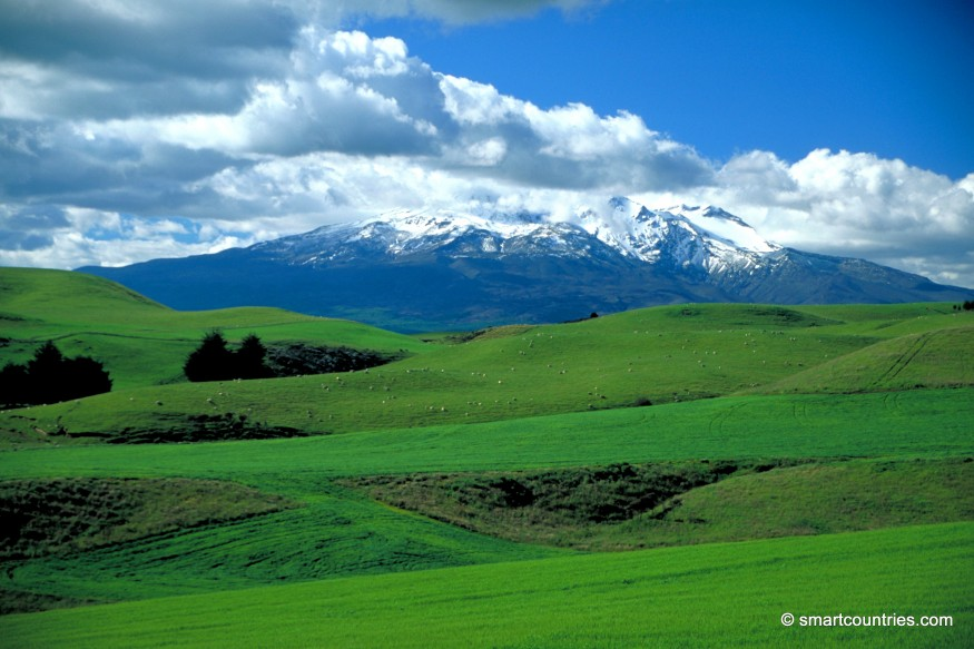 Mt Ruapehu Farmland