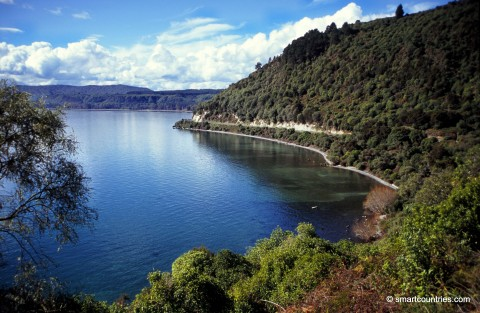 Lake Taupo View