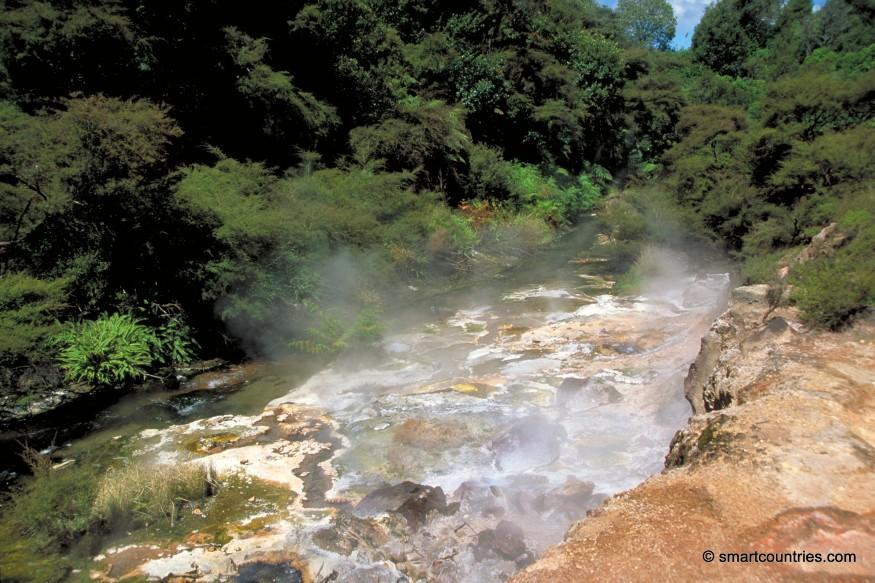 Thermal Stream Waimangu Valley