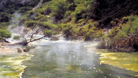 Thermal River Waimangu