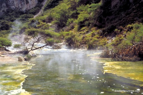 Thermal River Waimangu