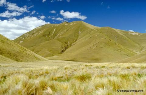 Tussock Grass Hills