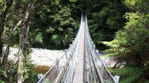 Swing Bridge Kaitoke