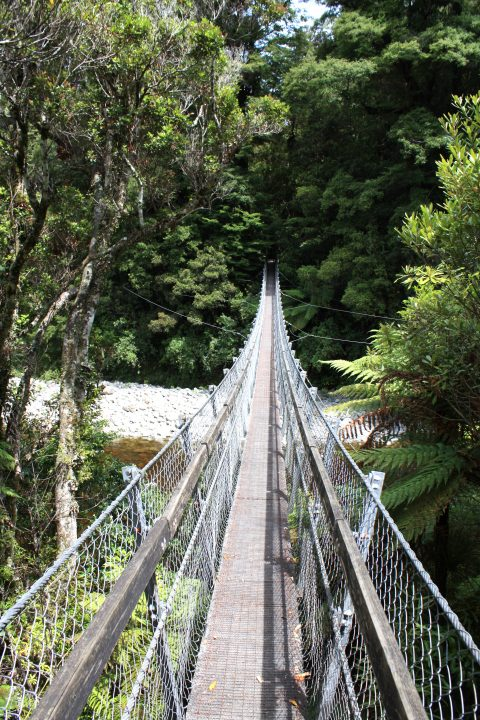 Swing Bridge Kaitoke