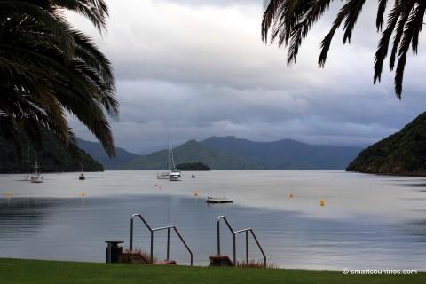 Picton View