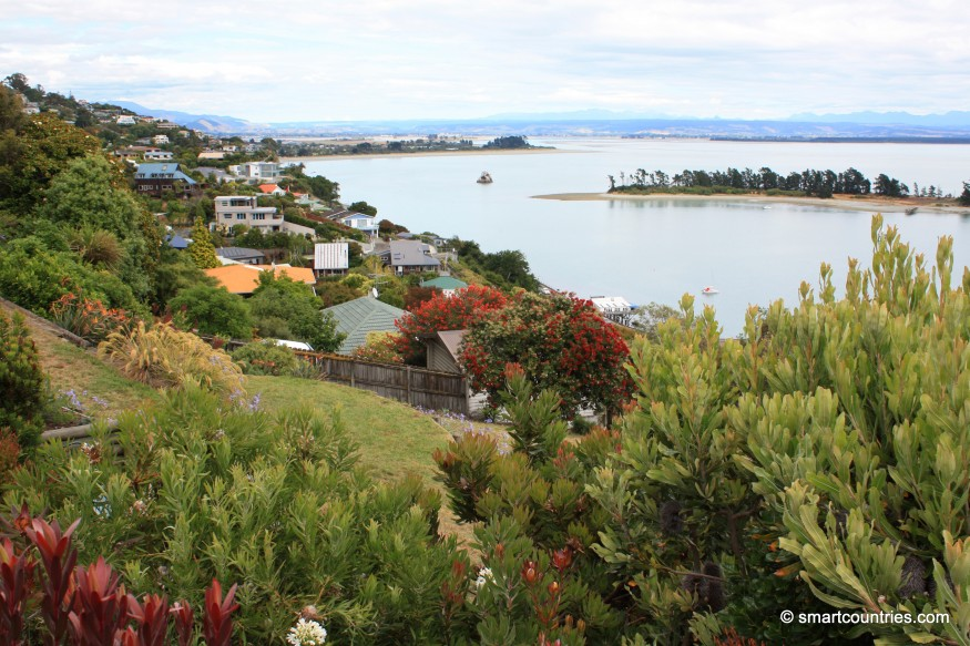Nelson View New Zealand
