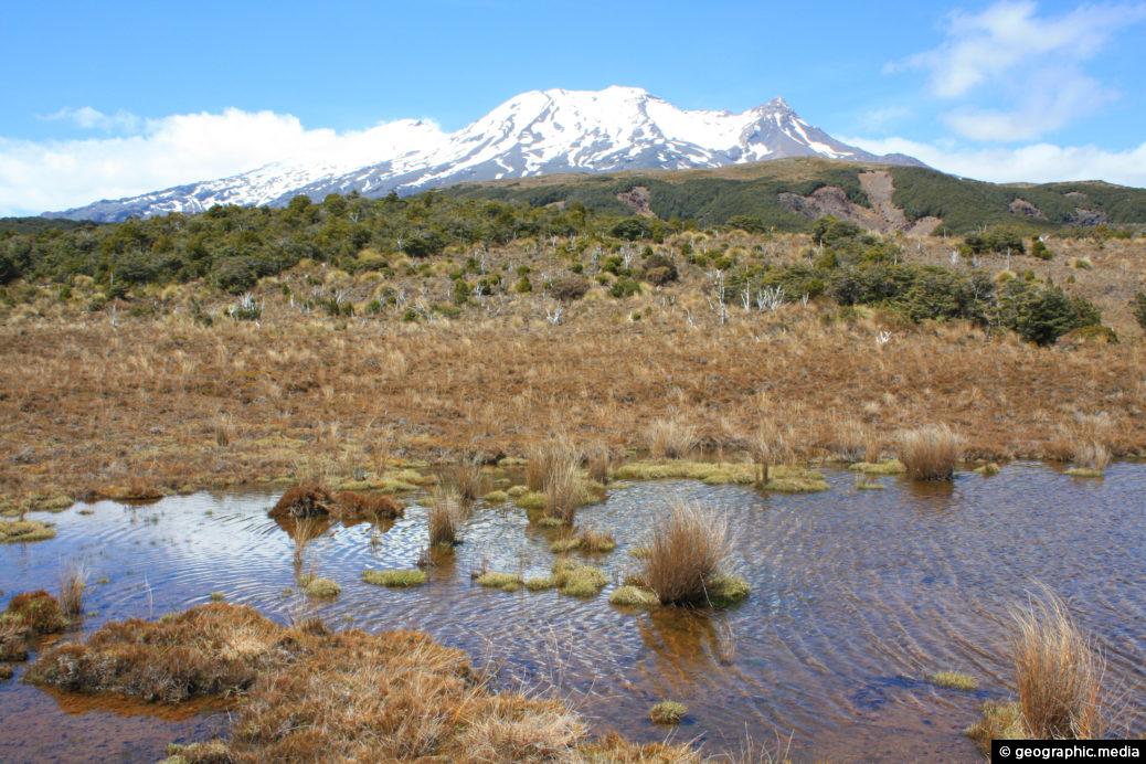 View of Mt Ruapehu from Waitonga Falls Walk