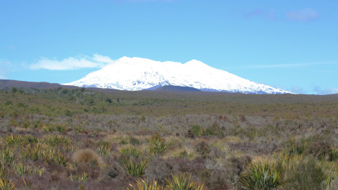 Mount Ruapehu and Plain