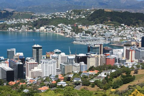 Wellington CBD & Harbour