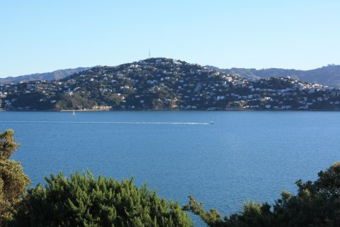 Evans Bay Wellington